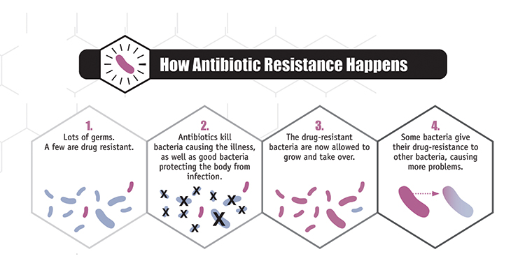 National Patient Safety Week: Focus on Antimicrobial Resistance